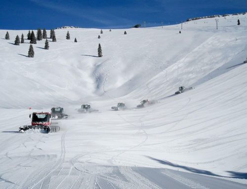 A Beginner's Guide to Vail's Back Bowls and Blue Ski Basin