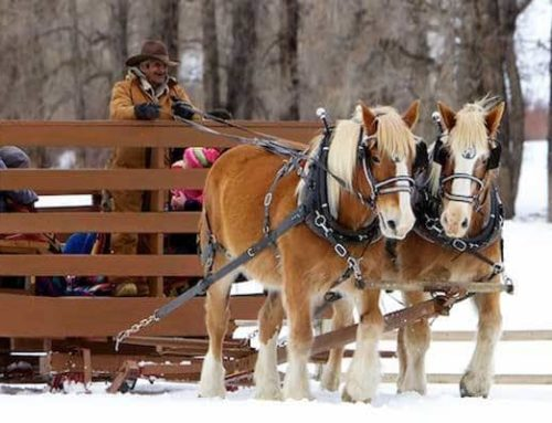 Sleigh ride and dinner in Vail